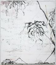 R Z maart 2010  04